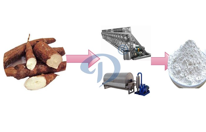 How to produce starch from cassava ?