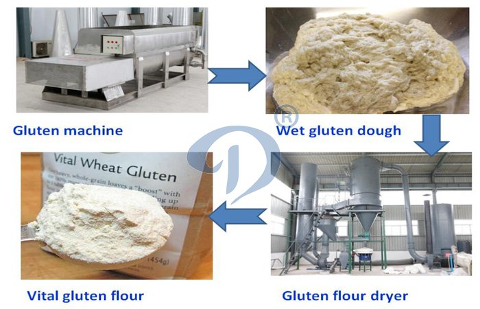 wheat starch and gluten machinery