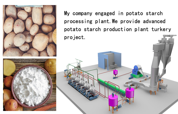 Advanced technology of potato starch process plant