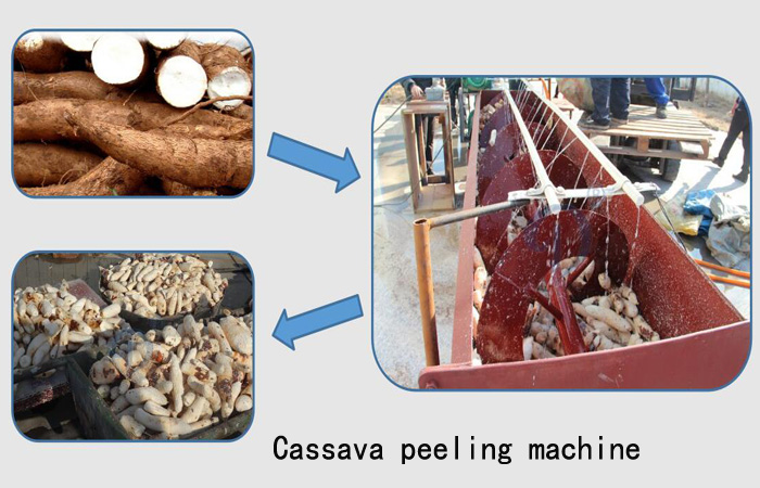 cassava washing and peeling machine