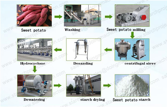 What is the process of sweet potato starch processing plant?