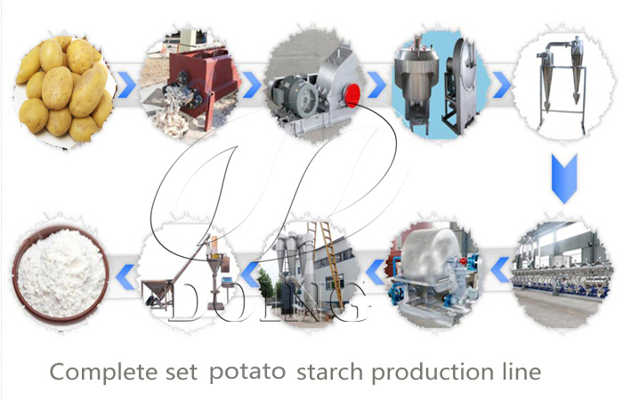 Doing team visit potato starch production line machine running