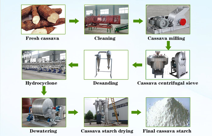 What is the process during cassava starch production line?
