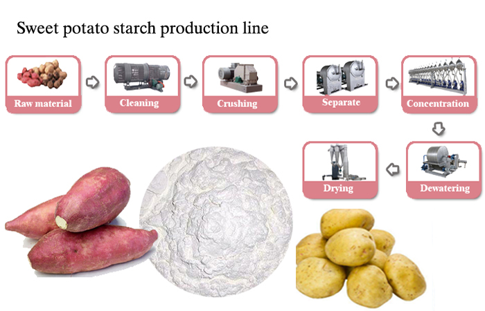 10TPD sweet potato starch processing plant project construction in Xinxiang city