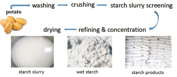 potatp starch production process