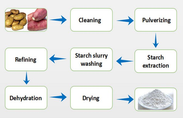 sweet potato starch production process