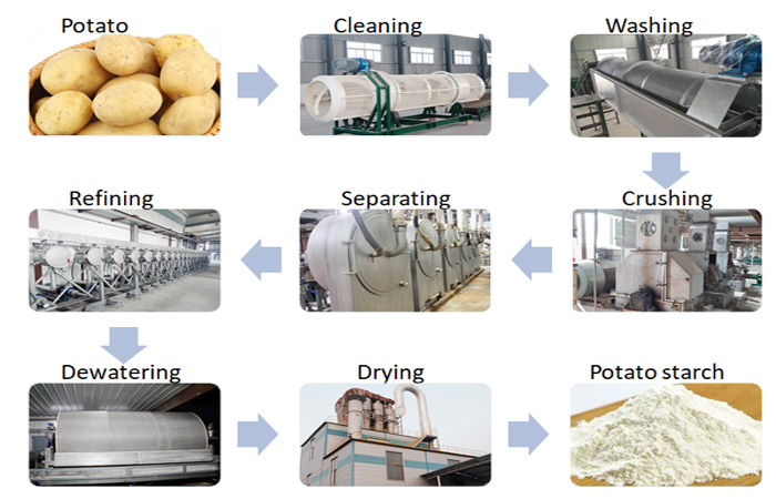 How to extract starch from potato?