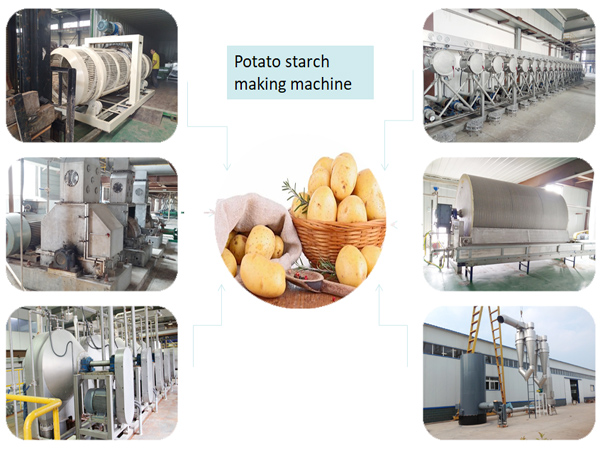 potato starch processing equipment