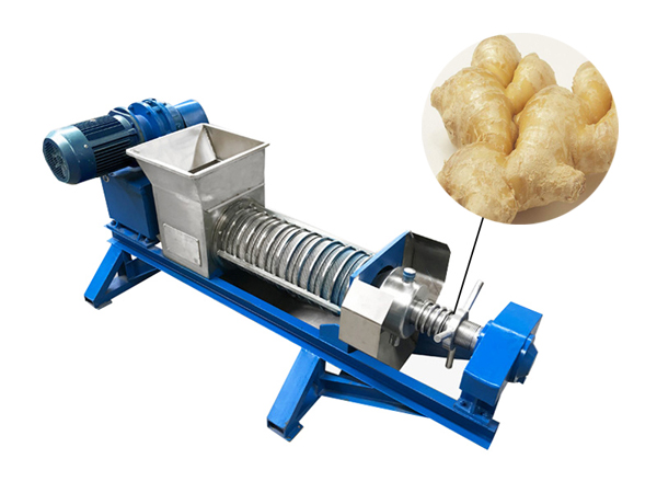 Screw press dewatering machine for ginger dewatering