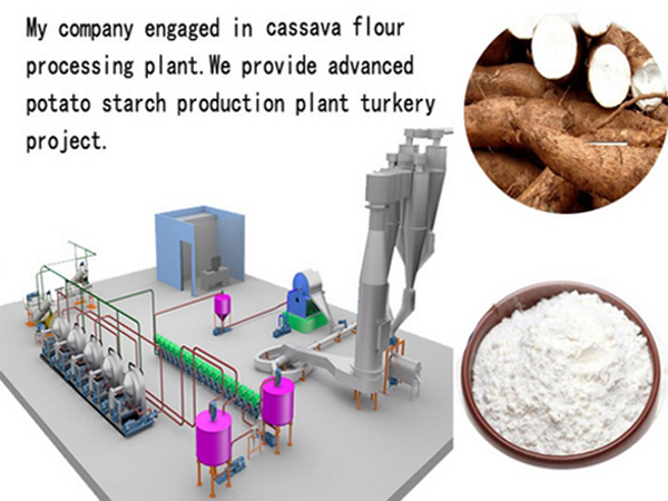 Cassava starch processing factory