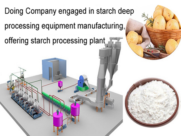 Advanced technology of potato starch processing plant