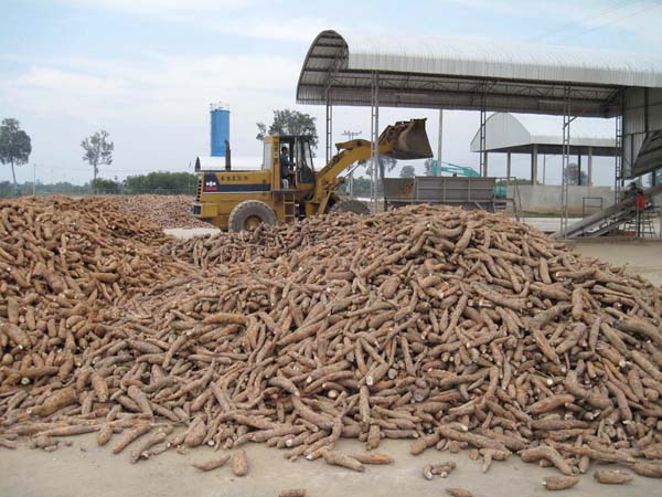 Cassava processing plant in Nigeria running video