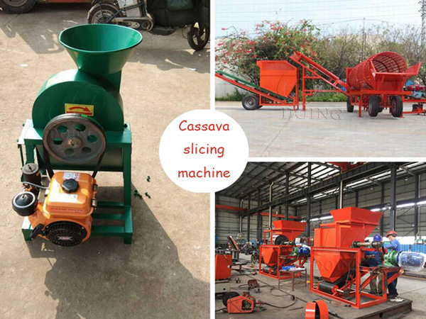 Video of different cassava chips cutting machine