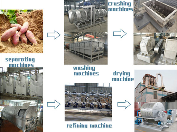 Sweet potato starch processing machinery