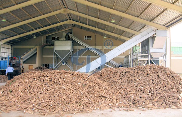 cassava flour producing plant