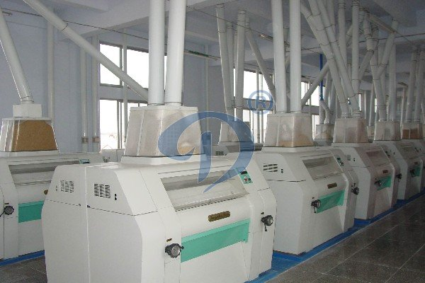 wheat glucose production plant