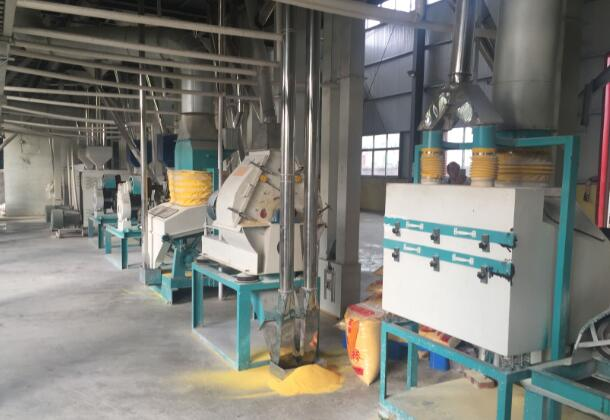 Corn syrup production equipment- corn flour making part