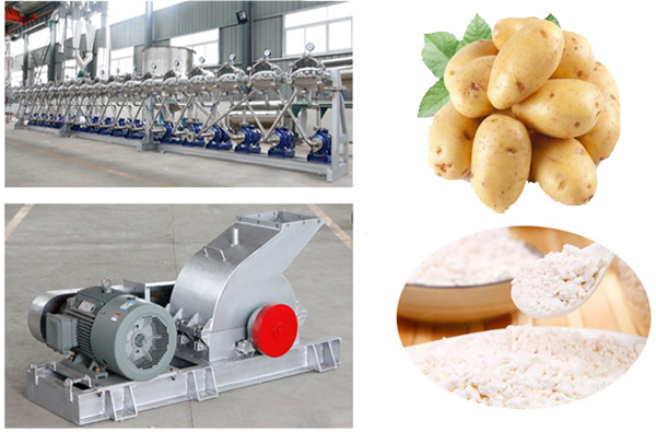 potato starch processing plant