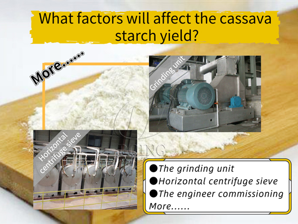 The grinding unit, horizontal centrifuge sieve and other factors will affect the cassava starch yield