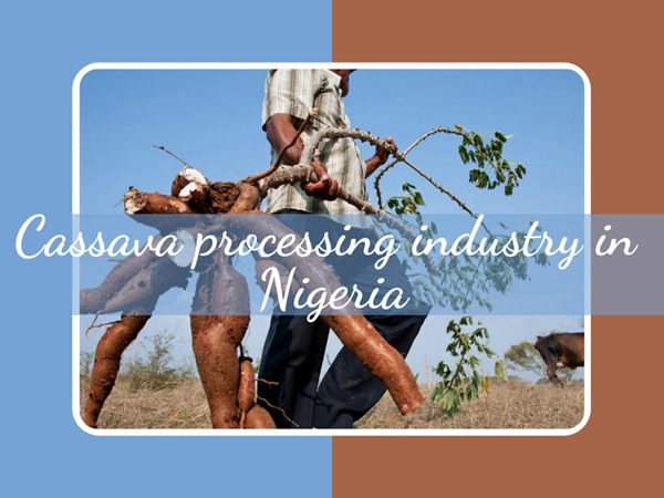 The Cassava Processing Industry in Nigeria: Traditional Techniques, Technological Developments and New Opportunity