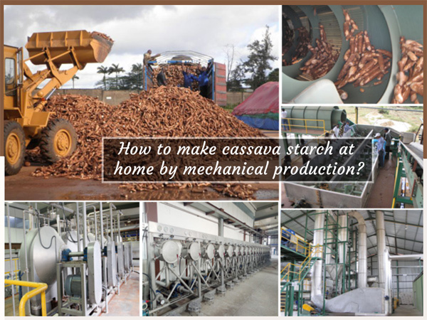 How to make cassava starch at home? Mechanical production